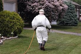 شركه رش مبيدات بالدمام